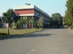 Pau Opens Admission For Phd Programs