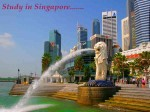 Study Abroad Wide Range Of Learning Opportunities In Singapore