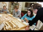 What Is Anthropology Scope Career Opportunities