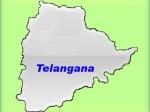 Telangana Government Set Up Separate Intermediate Board