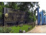 Tanuvas Opens Admissions For B Tech Programmes
