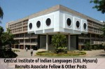 Ciil Mysore Job Openings For 17 Associate Fellow And Other Posts