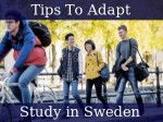 Tips To Adapt For International Students In Sweden
