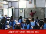 Uptet Registration Starts On October