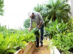 Become An Agriculturalist