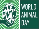 World Animal Day Career Options Animal Lovers