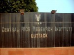Crri Cuttack Recruitment Apply For Project Coordinator And Other Post