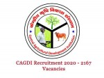 Cagdi Recruitment 2020 For 2167 Investment Officers And Managers Post Apply Online Before June