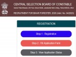 Bihar Csbc Forester Recruitment 2020 For 236 Vacancies Apply Online Before September