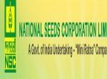 Nscl Recruitment 2020 For 220 Management Trainees Sr Trainees Diploma Trainees And Trainee Mates