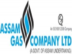 Agcl Recruitment 2021 For 12 Management Trainees And Graduate Engineers Apply Online Before March