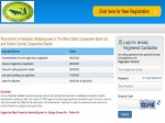 Bihar State Cooperative Bank Recruitment 2021 For 200 Assistant Posts Download Bscb Notification
