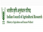 Icar Recruitment 2021 Notification For Young Professional Posts E Mail Applications Before June