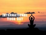 International Yoga Day Theme History Logo And Celebrations