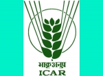ICAR NET II 2018 Results Expected By 3rd Week Of March