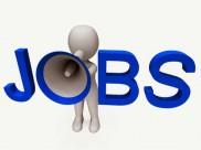DHTE Jharkhand Recruitment 2021: Apply Online For 315 Apprentice Posts Before November 15