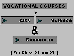 Vocational Courses For Class XI & XII