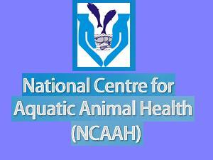 M.Tech Admission at NCAAH CUSAT, Cochin