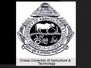 Orissa University Admissions 2013