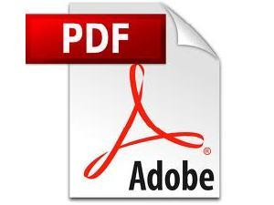 Adobe To Launch Enhanced Creative Option
