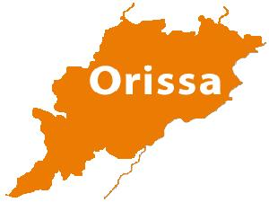 Orissa Class 12 Results 2013 on 29May