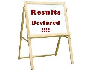 Punjab Class 10 Results 2013 Declared