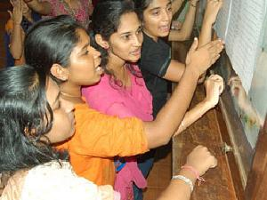 Inter Supplementary 2013 Result Declared