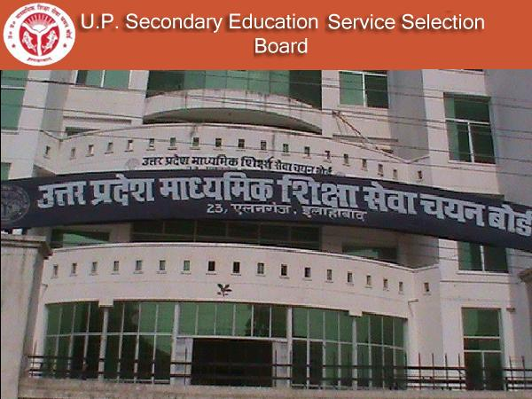 UP: teachers terminated from service