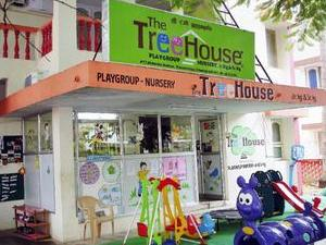 Tree House Education Q1FY14 net rises