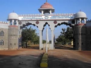 PG Programme admission at KVAFSU, Bidar