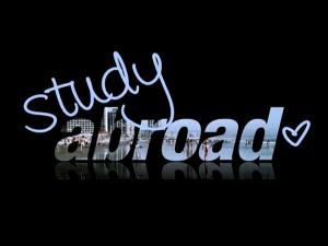 Study abroad designs new search engines