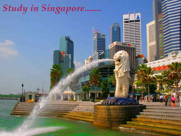 Various learning scopes in Singapore