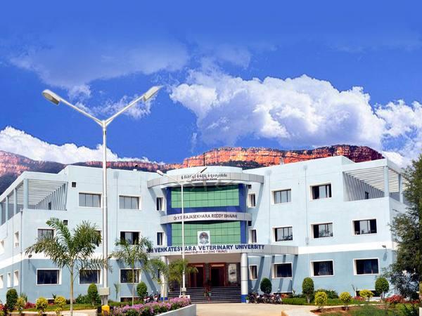 M.V.Sc/M.F.Sc/Ph.D admissions at SVV University