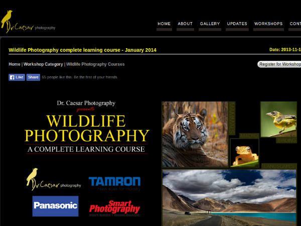 Online course on wildlife photography