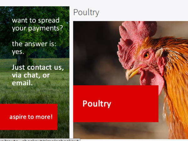 Online course on poultry farming