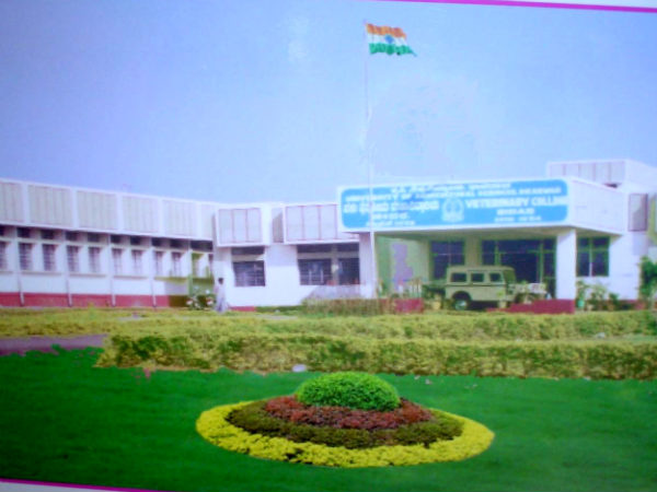 Karnataka Veterinary Animal and Fisheries Science University, Karnataka