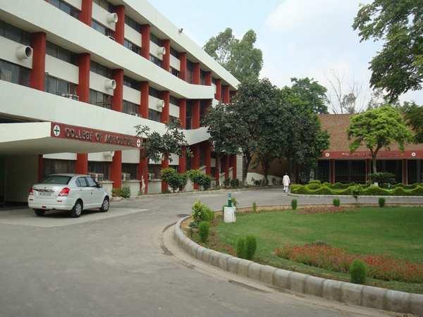 Agriculture topten universities