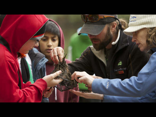 Learn about watersheds & outdoor education online