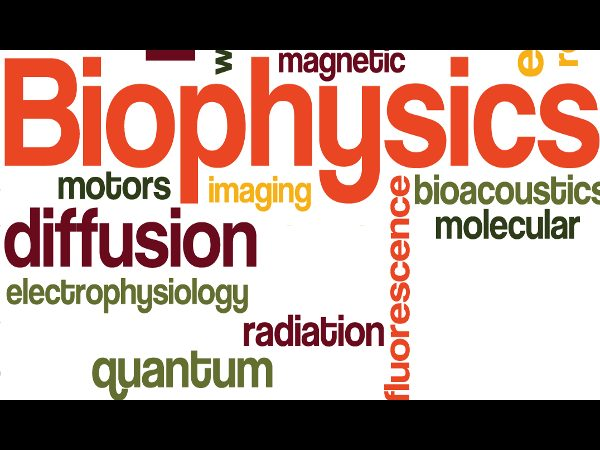 What is Biophysics?