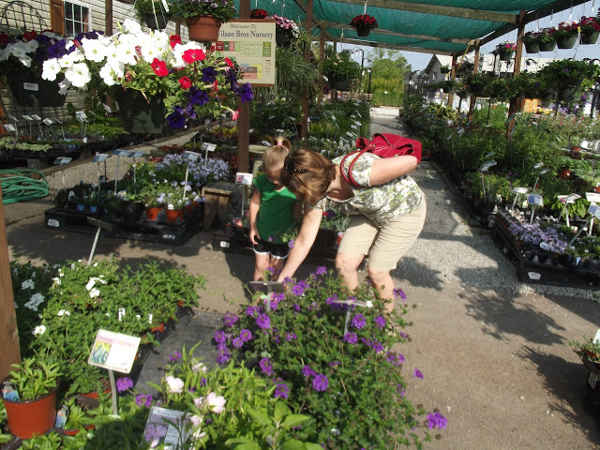 What is Horticulture? Scope and career