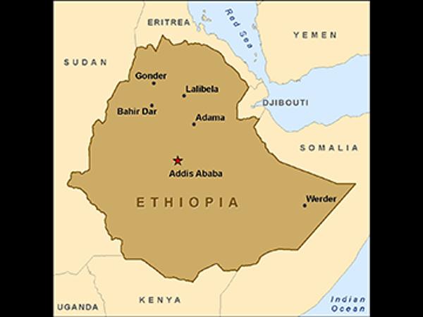 Ethiopia seeks Indian help to revitalise education