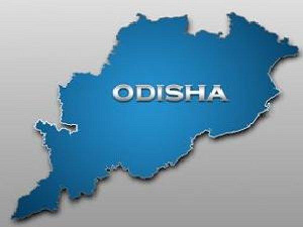 Harvard students visit Odisha steel plant