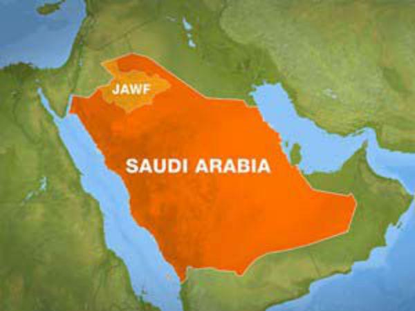 Saudi Arabia seeks educational ties with India