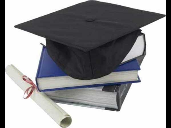 The Charpak scholarship program by France