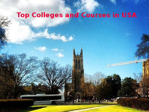 Top Courses and Colleges in USA