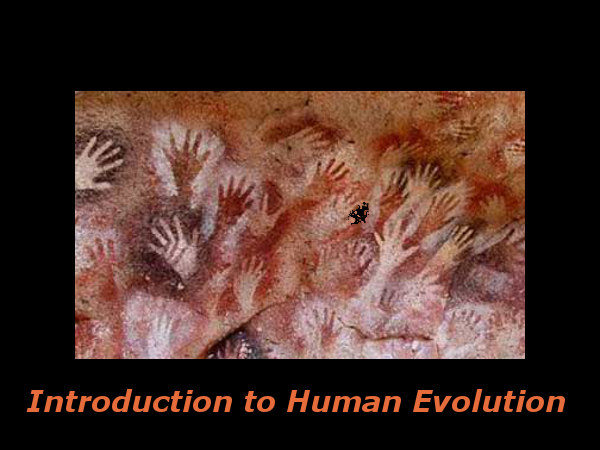 Introduction to Human Evolution: Online course