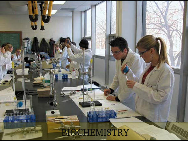 What is Biochemistry? Scope and Career