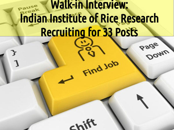 Indian Institute of Rice Research Recruiting