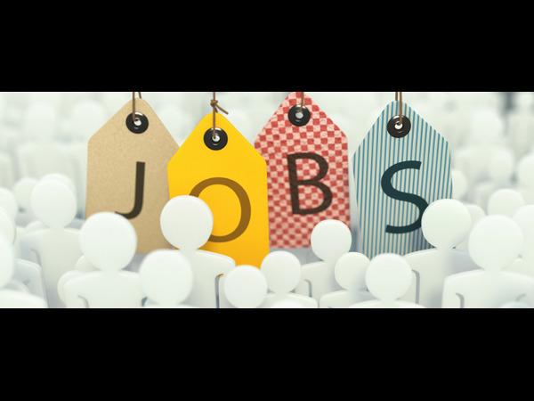 CSIR –CFTRI, Mysore, Hiring for 14 Assistant Posts