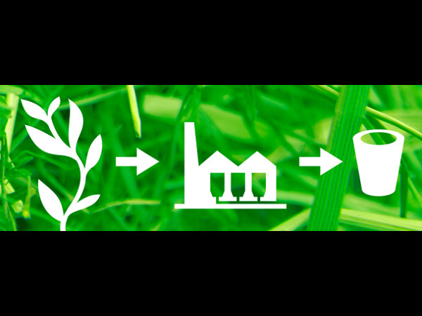 Industrial Biotechnology: Online Course